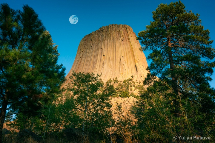 Devils Tower National Monument, Wyoming<p>