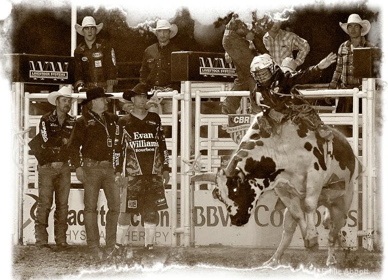 Cowboy Tintype