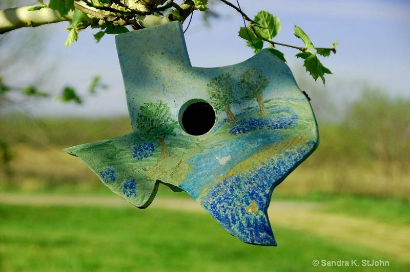 Texas Bluebonnet Birdhouse