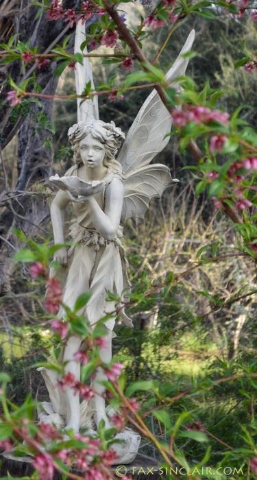Fairy Blessings