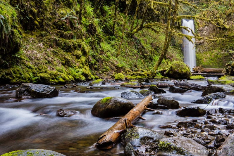 Along the Columbia River Gorge, Oregon