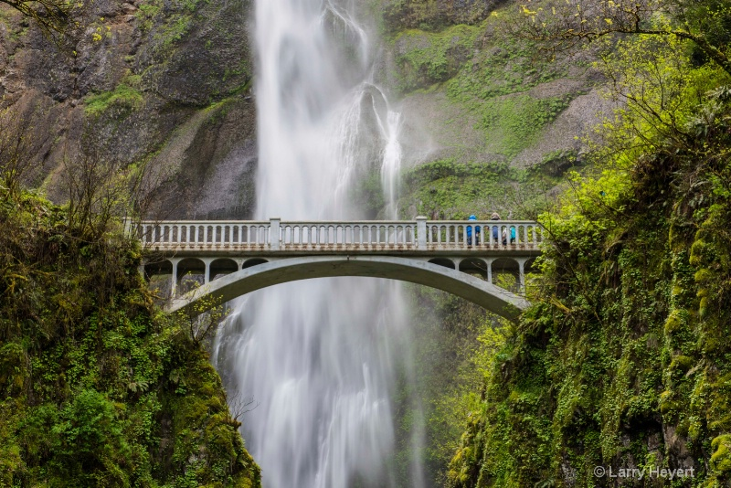 Along the Columbia River Gorge