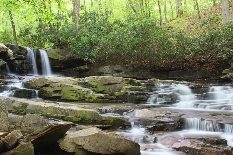 Spring at Jonathan Falls