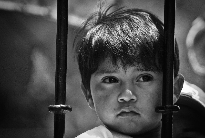 Child  Behind the Fence