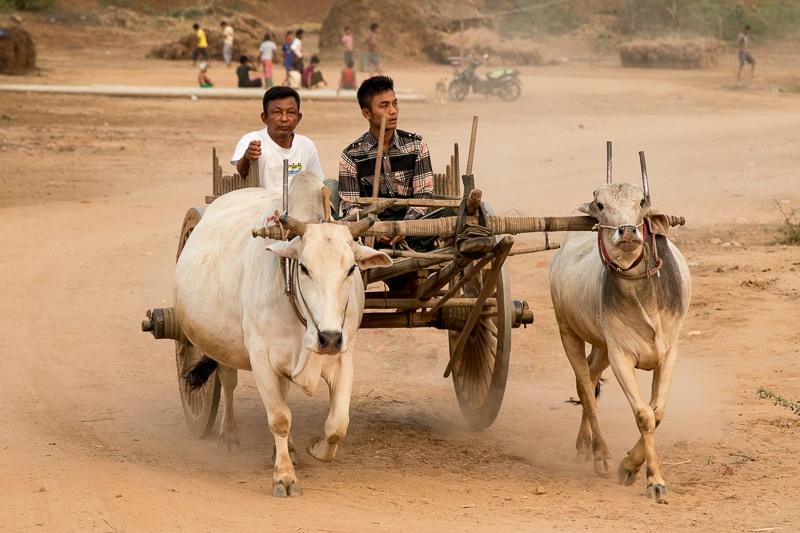 Minnan Thu Village