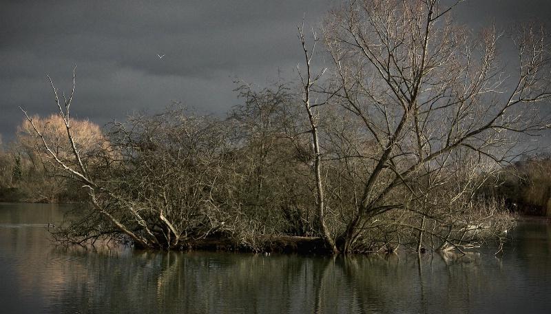 Spade Oak Reservoir