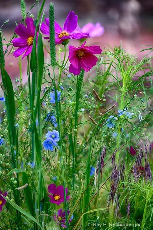 hoc0464 flower15
