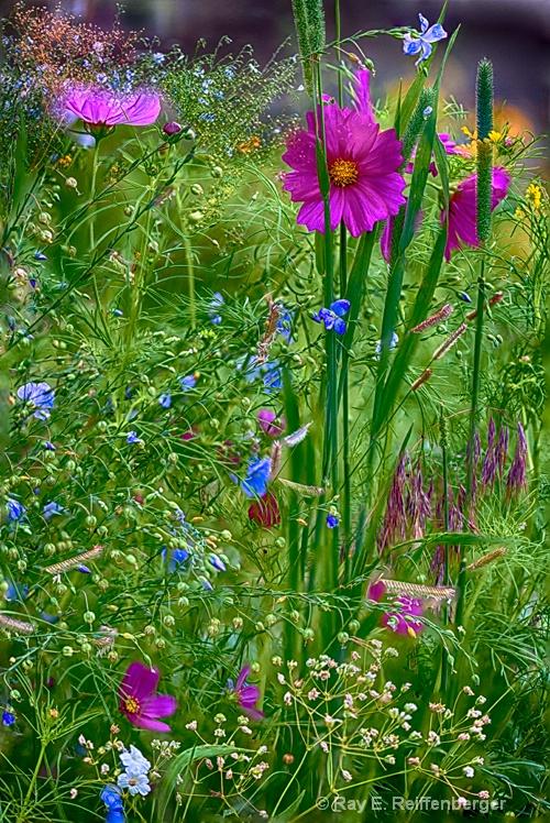 hoc0523 flower15