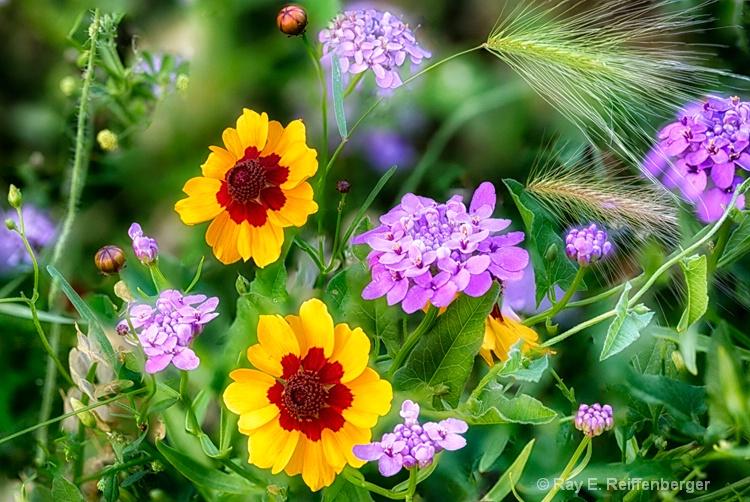 hoc9307 flower15