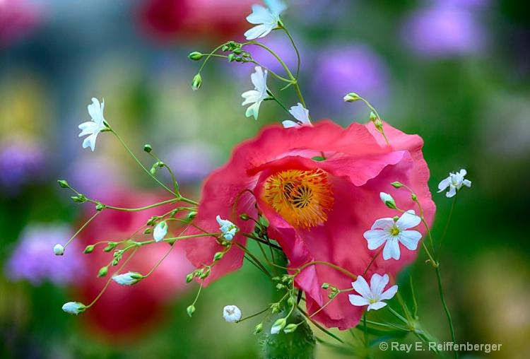 hoc9867 flower15
