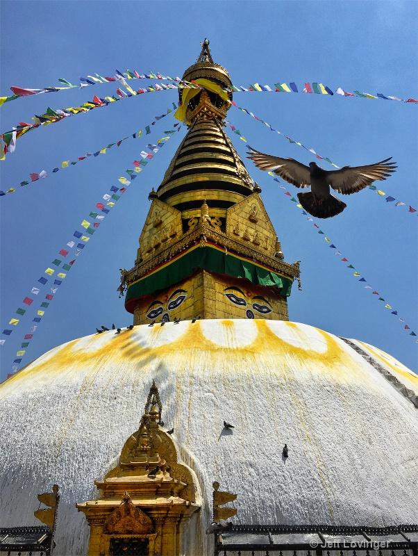 Swayambhu Temple, Kathmandu, Nepal  #802