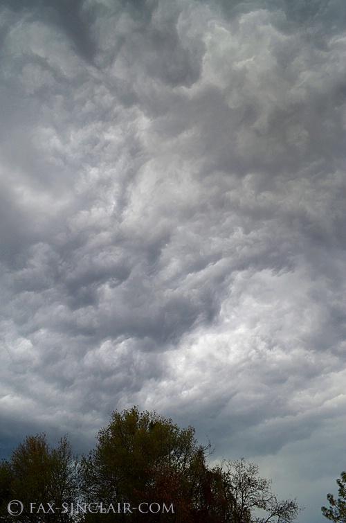 Brain Clouds