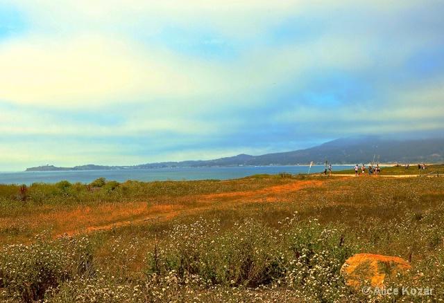 Coastal Half Moon Bay  facing Pillar Point