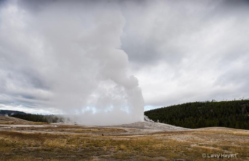 Old Faithful- Yellowstone National Park