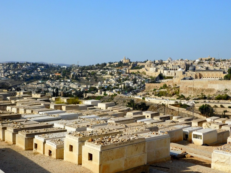 TOMBS AND THE CITY