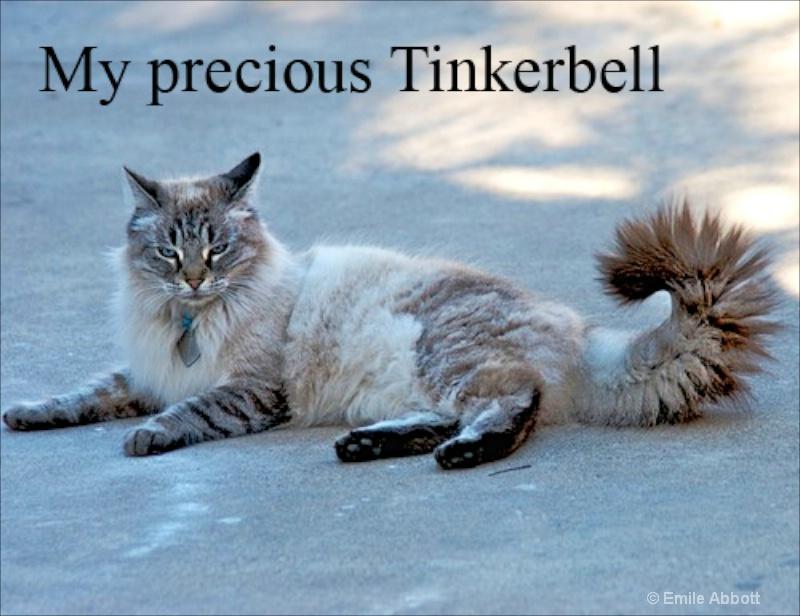 Tinkerbell  RIP