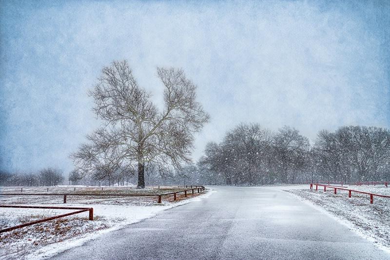 Let * it * Snow