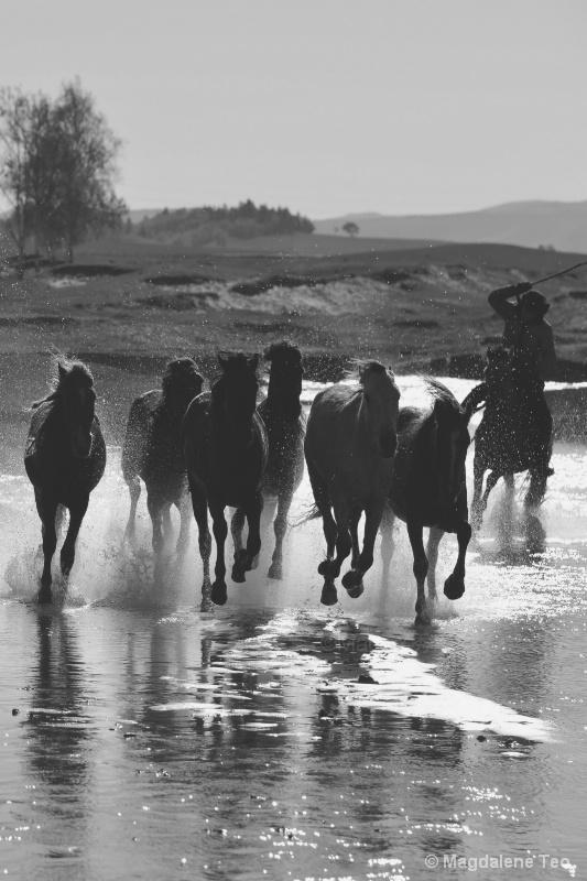 Horses running over Water