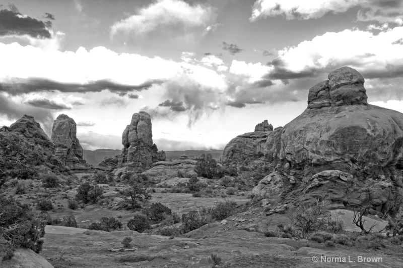 B/W Landscape of Arches NP