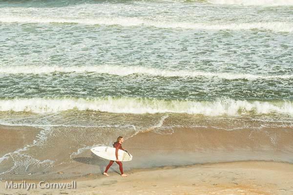 Surfer Day