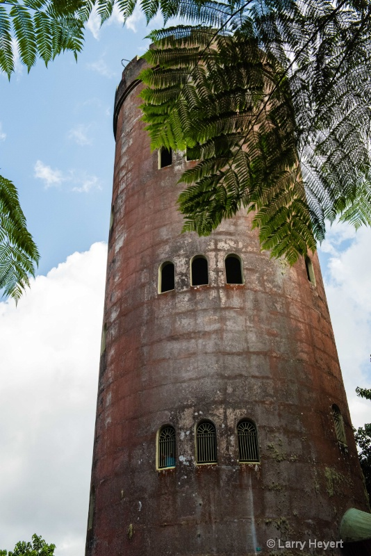 Tower at El Yunque National Forest