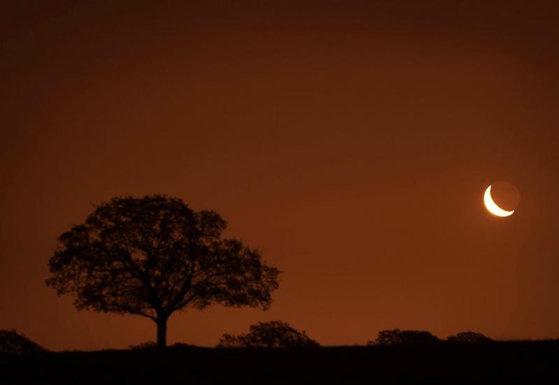 Morning's Moon