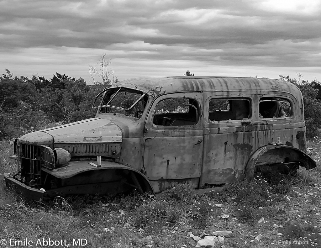 Old Workhorse in B&W