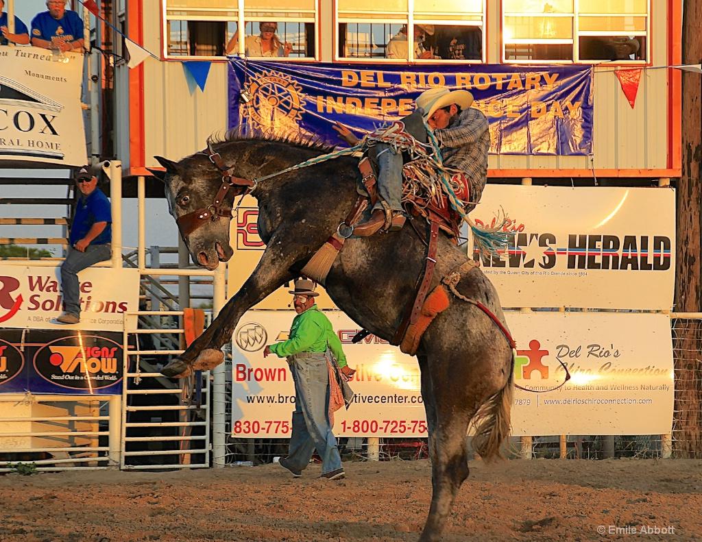 Saddle Bronc Riding for Stan K.