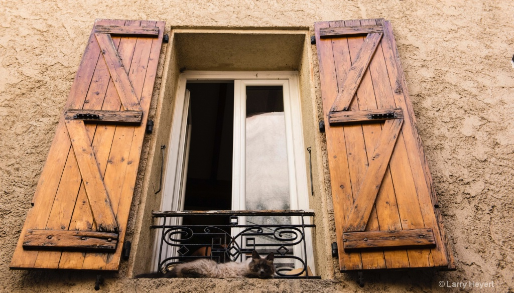 Cat in a Window in Provence, France