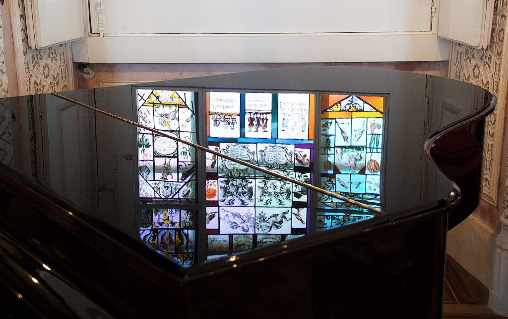 Reflection on a Pinao