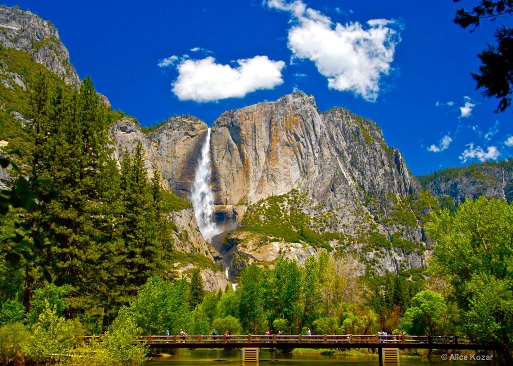 Yosemite Falls from the Bridge