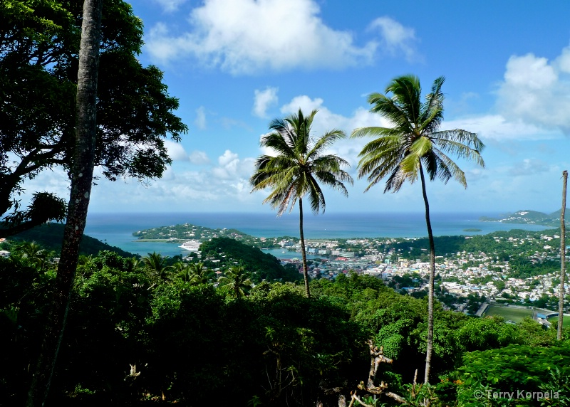 Scenic View from St. Lucia