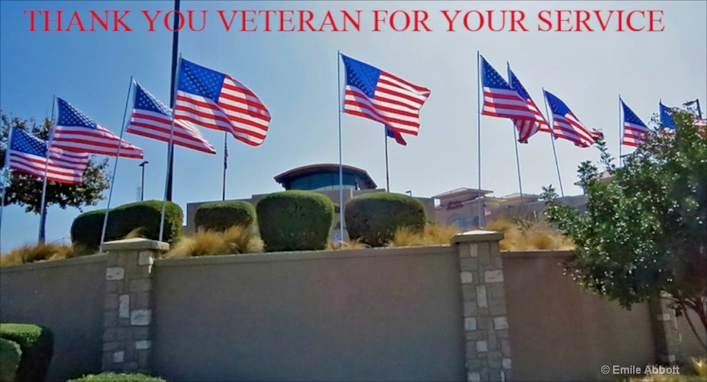 Veterans Thank You For Your Service