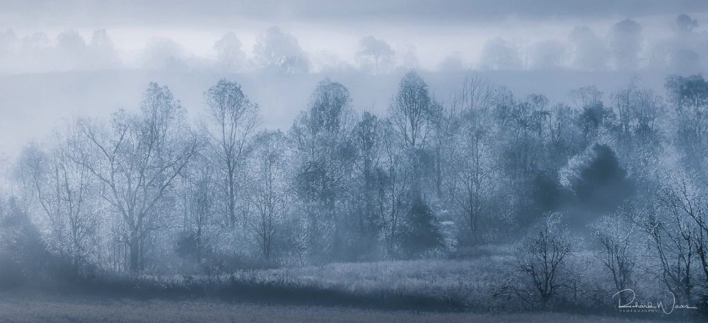 Early Morning Fog at Cades Cove