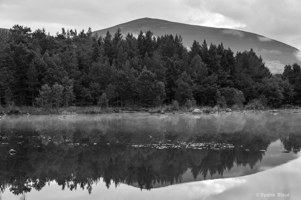 Cairngorms National Park Reflection