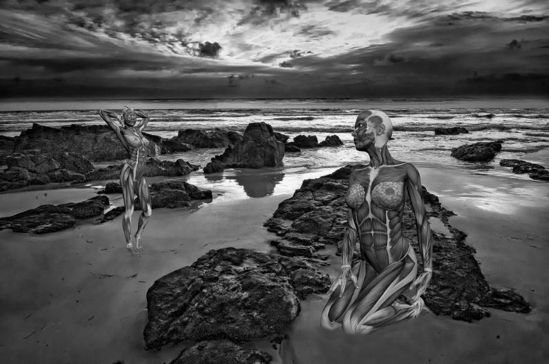 Nude Beach Fantasy
