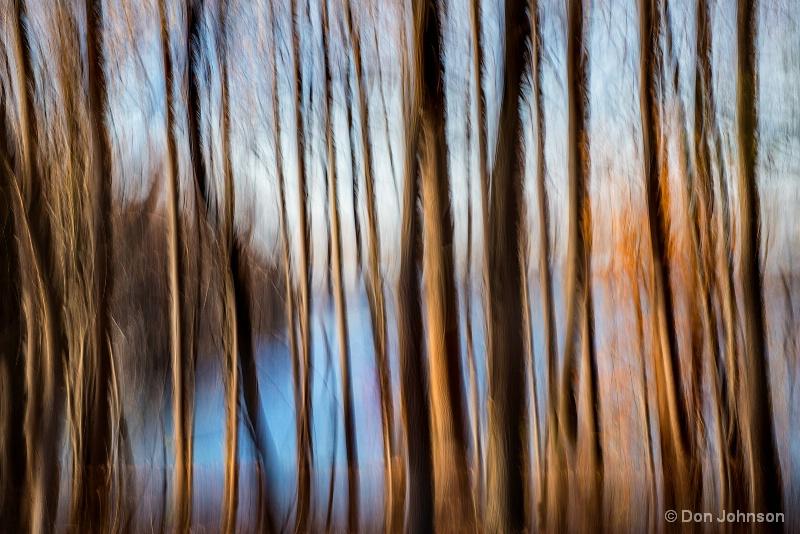 Winter Trees at Lake 11-29-16 060