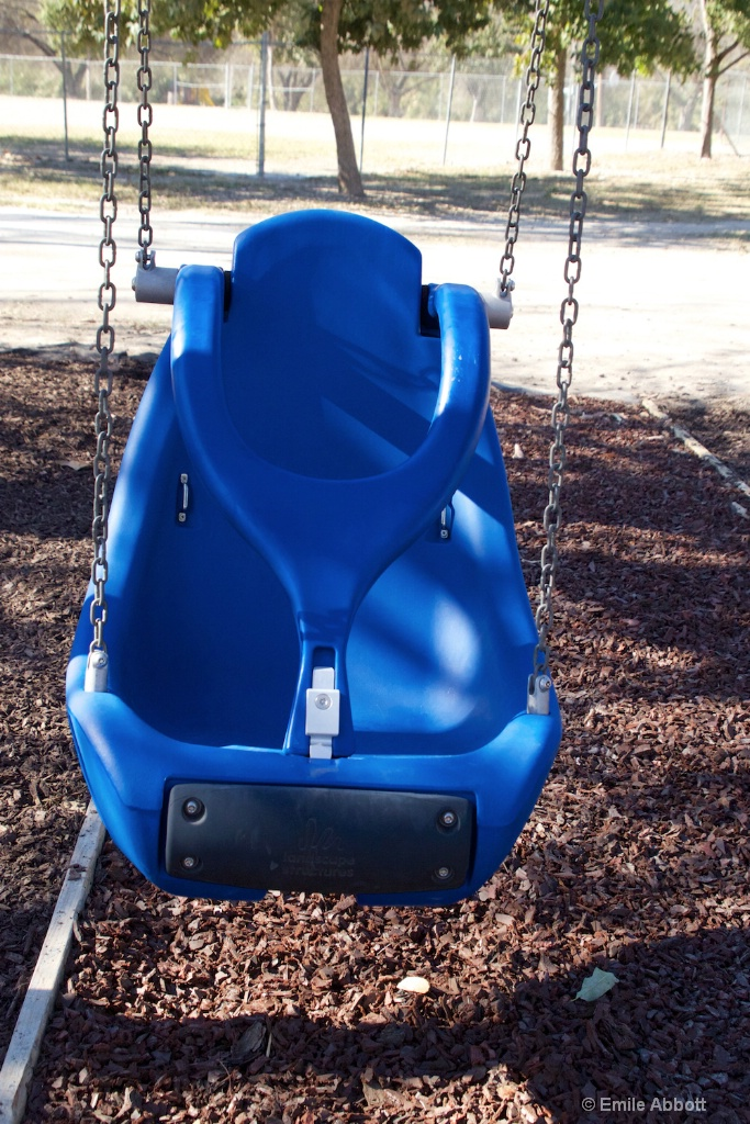 Close up Handicapped Swing