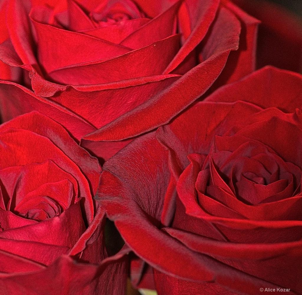 Crimson Velvet Triplets