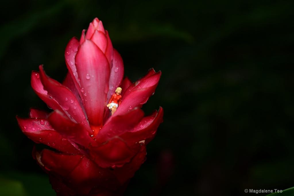 Lady sitting on Flower