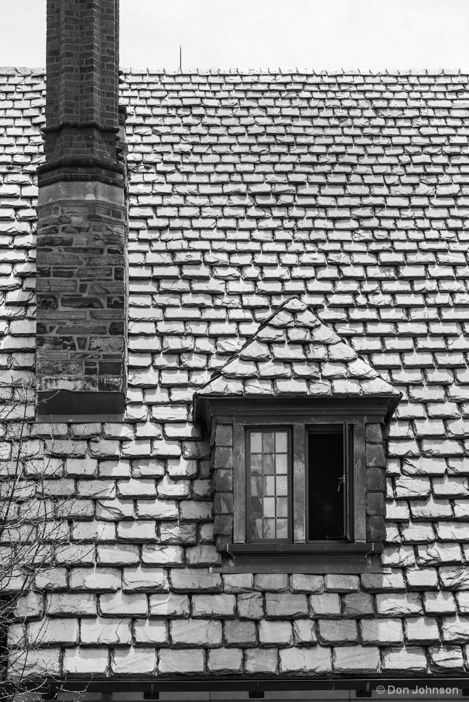 B&W Princeton Window 4-22-17 214