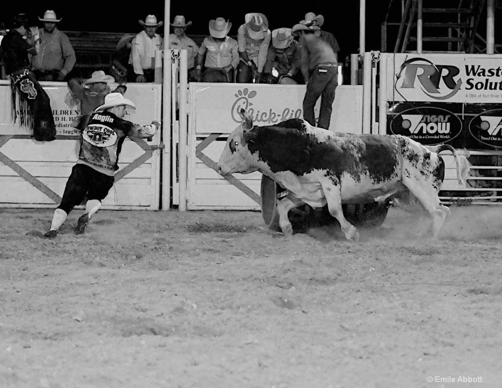 Bull Fighter, Anglin