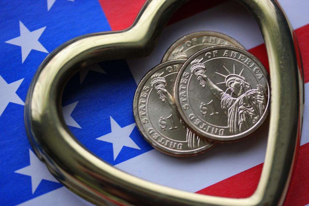 Love American Liberty  9960