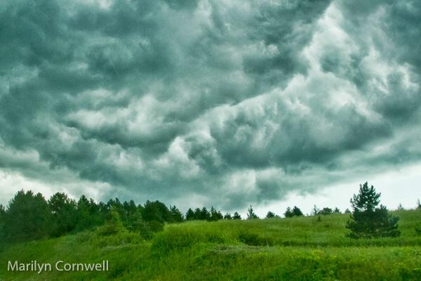 Kingston Storm