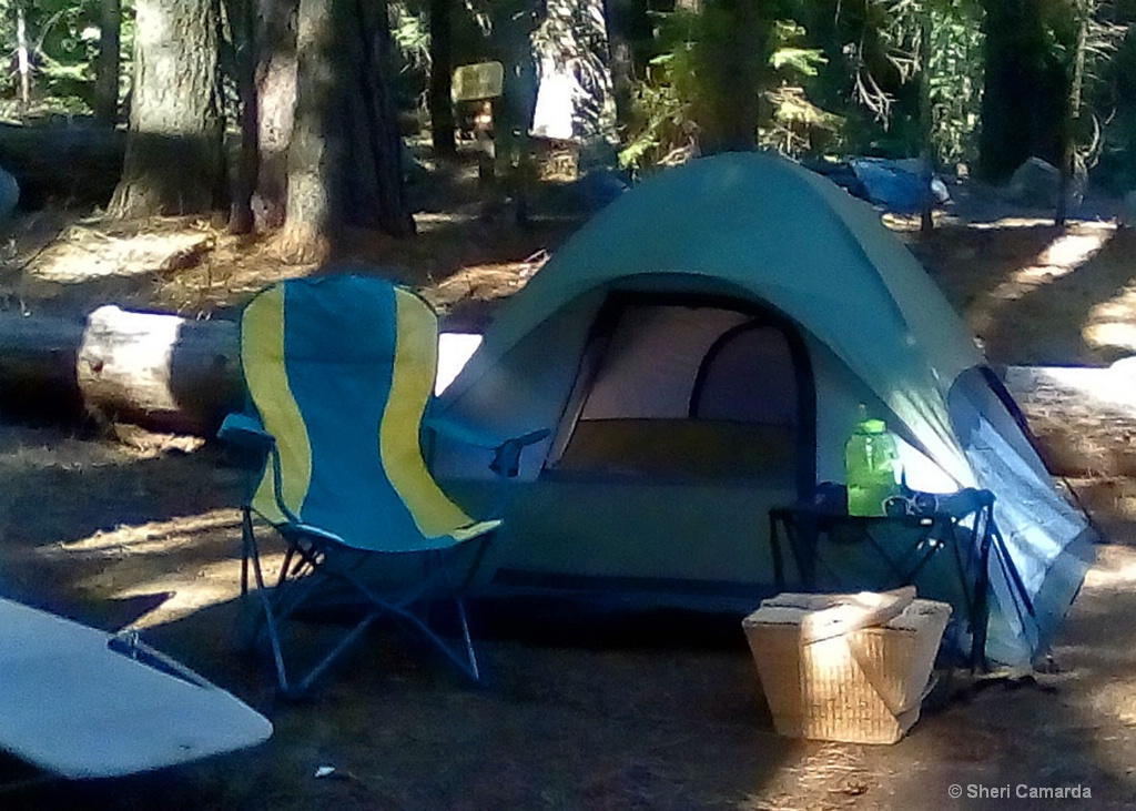 My lil Home in the woods