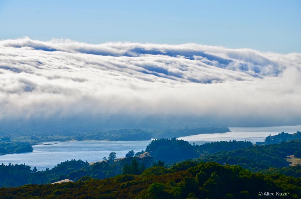 Dense Fog Approaching Crystal Reservoir