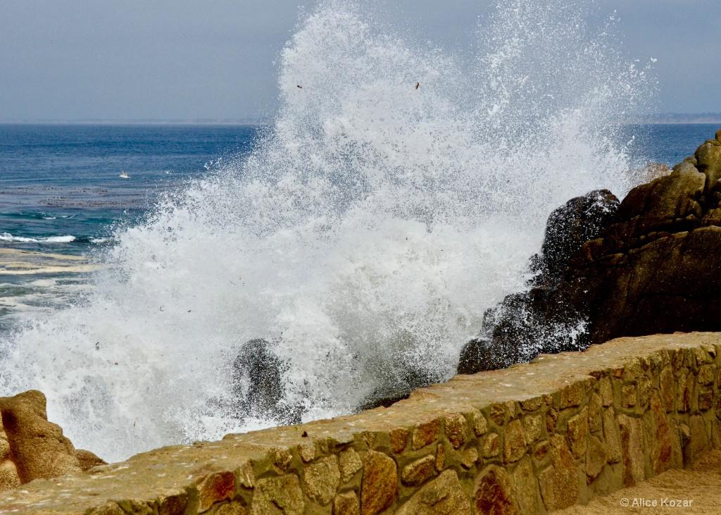 Thundering Surf