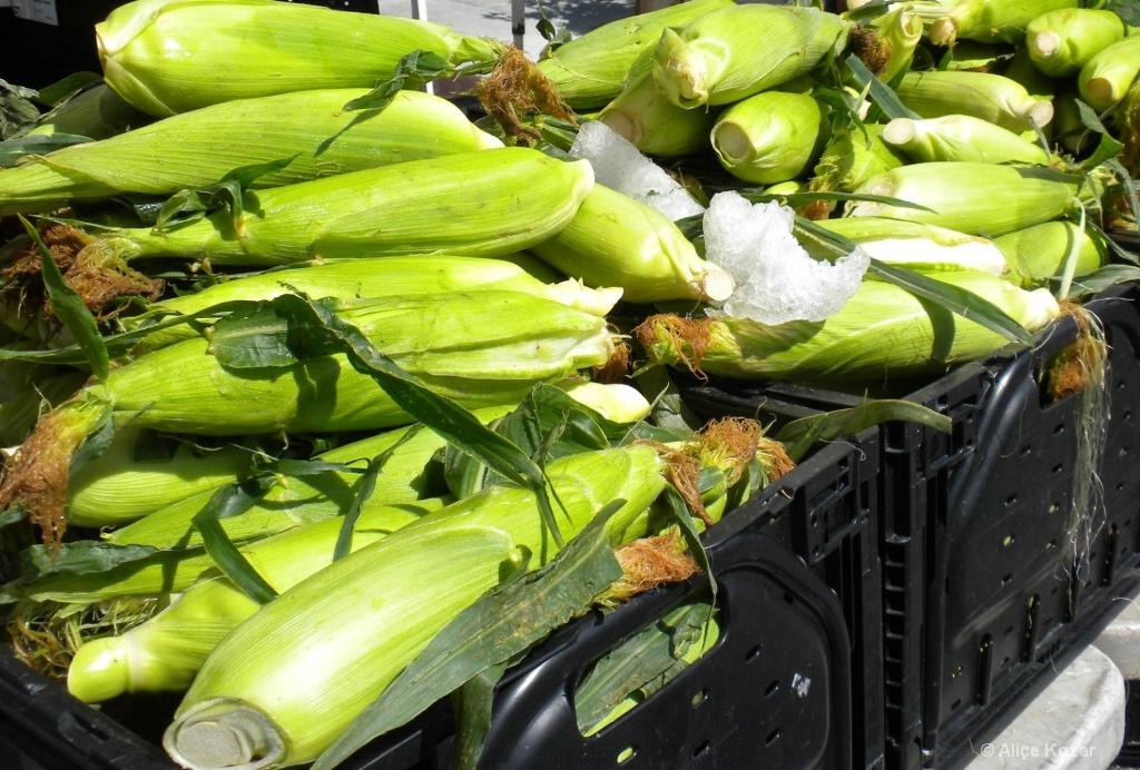 Cascading Corn