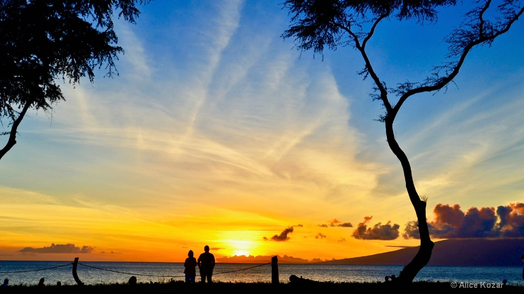 A Blaze of Sunset Color