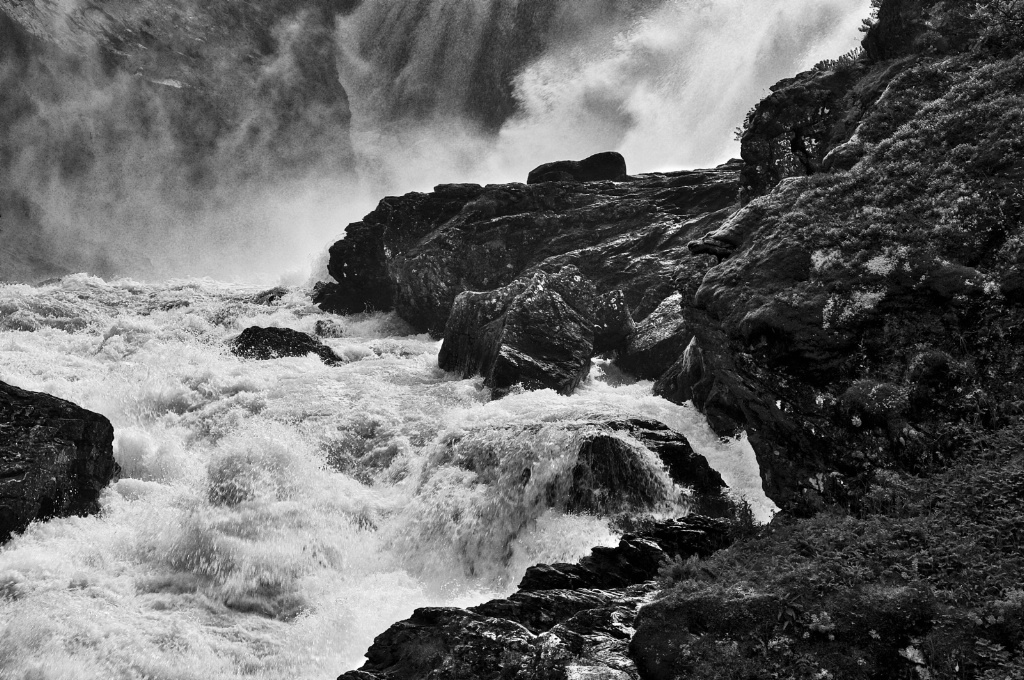 Nature´s Force in BW